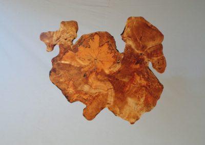 Holzphantasien - Kernbirke Knollenwuchs